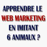 apprendre le webmarketing