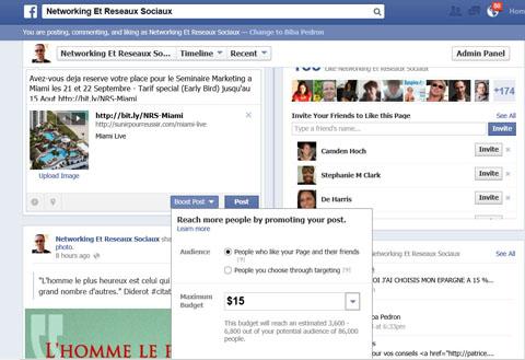facebook, biba pédron, publicité payante